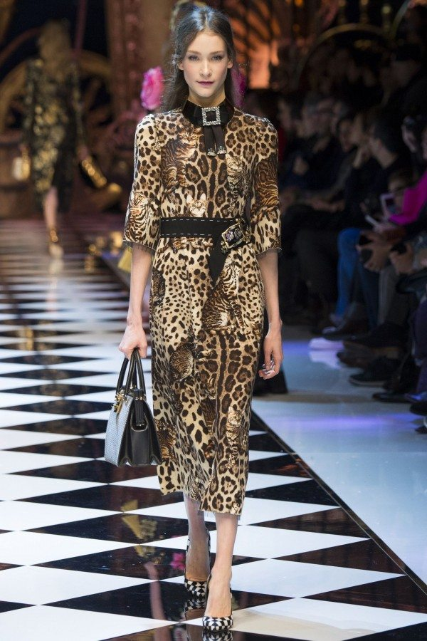 aw-16-trends-animal-print-dolce-and-gabanna